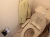 toilet-wash-hands-02