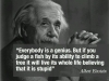 albert-einstein-everybody-is-a-genius