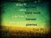 striving-for-success-without-hard-work