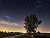 stars-in-the-sky